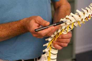 Chiropractic services treat neck and back pain and can alleviate migraine, sciatica, and herniated discs